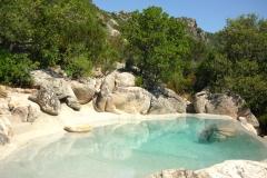piscina-naturale-biodesign-196